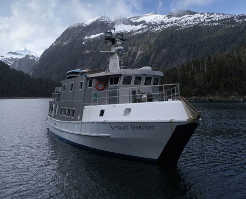 Parker Guide Service Mountain Goat Hunt Luxury Yacht