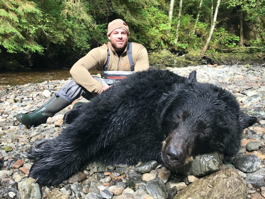 Parker Black Bear 2020