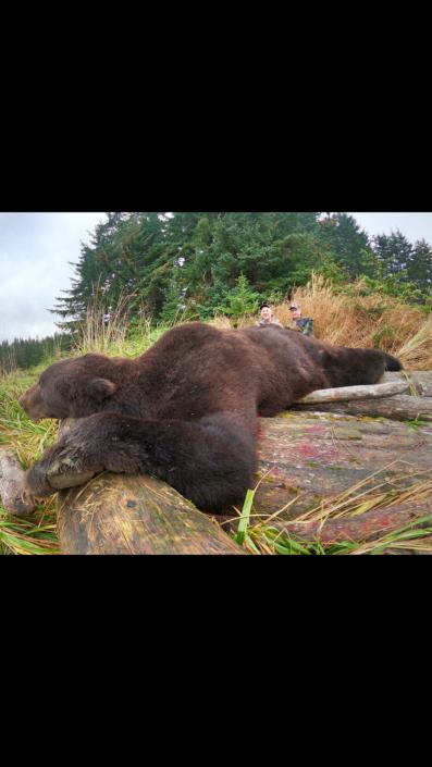 Boat Hunts 2020 brown bear